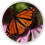 Round Beach Towel featuring the photograph Monarch On Purple Coneflower by Barbara McMahon