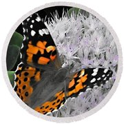 Monarch Round Beach Towel by Photographic Arts And Design Studio