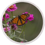 Monarch Pit Stop Round Beach Towel