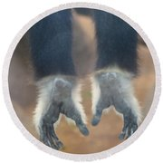 Monkeying Around  Round Beach Towel