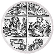 Monsters Of Land Sea And Air 1475 Round Beach Towel