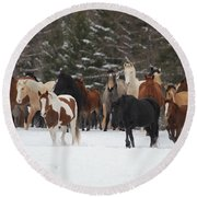 Montana Herd Round Beach Towel by Diane Bohna