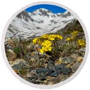 Blue Lakes Colorado Wildflowers Round Beach Towel