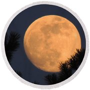 Round Beach Towel featuring the photograph Moon Pines by Charlotte Schafer