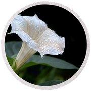 Moonflower - Rain Drops Round Beach Towel by Nikolyn McDonald