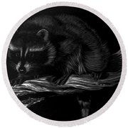 Moonlight Bandit Round Beach Towel
