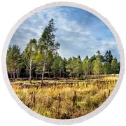 Wetlands In The Black Forest Round Beach Towel