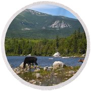 Moose Baxter State Park Maine Round Beach Towel