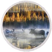Moose Lake Round Beach Towel
