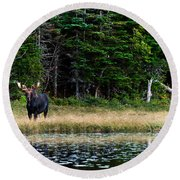 Moose Round Beach Towel