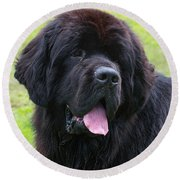 Morgan The Newf Round Beach Towel