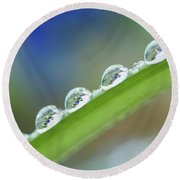 Morning Dew Drops Round Beach Towel