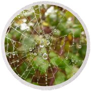 Round Beach Towel featuring the photograph Morning Dew by Vicki Spindler