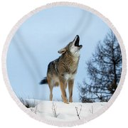 Round Beach Towel featuring the photograph Morning Howl by Jack Bell