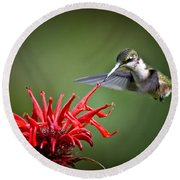 Morning Meal Round Beach Towel by Cheryl Baxter