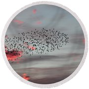 Round Beach Towel featuring the photograph Morning Stretch by E Faithe Lester