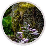 Moss And Flowers In Markree Castle Gardens Round Beach Towel