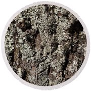 Round Beach Towel featuring the photograph Moss And Lichens by Jason Williamson