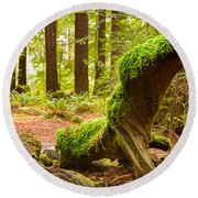 Mossy Creature Round Beach Towel