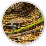 Mossy Log And Stream Round Beach Towel