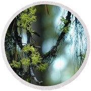 Mossy Playground Round Beach Towel