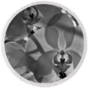 Round Beach Towel featuring the photograph Moth Orchid Backlit by Ron White