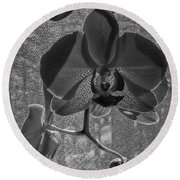 Round Beach Towel featuring the photograph Moth Orchid In Window by Ron White
