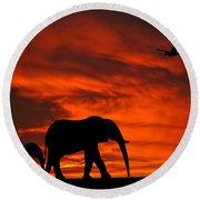 Round Beach Towel featuring the photograph Mother And Baby Elephants Sunset Silhouette Series by David Dehner