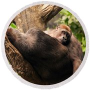 Mother And Youg Gorilla Sleeping In A Tree Round Beach Towel by Chris Flees