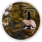 Mother Goose Il Round Beach Towel