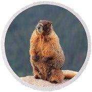 Mother Marmot Round Beach Towel
