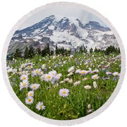 Mount Rainier And A Meadow Of Aster Round Beach Towel by Jeff Goulden