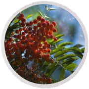 Round Beach Towel featuring the photograph Mountain Ash by Yulia Kazansky