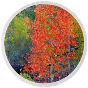 Mountain Color Round Beach Towel