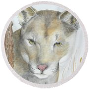 Mountain Hunter Round Beach Towel