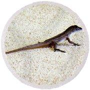 Round Beach Towel featuring the photograph Mr. Gecko by Pennie  McCracken