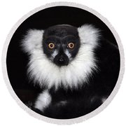 Round Beach Towel featuring the photograph Mr Lemur by Terri Waters
