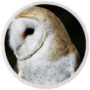 Mr Owl  Round Beach Towel