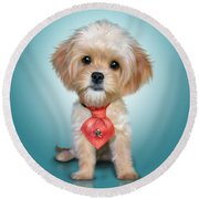Mr. Toby Waffles The Cavapoo Round Beach Towel