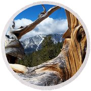 Mt. Charleston Thru A Tree Round Beach Towel