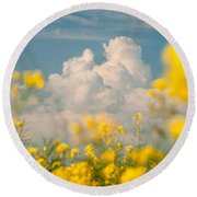 Mt Cloud Round Beach Towel by Davorin Mance