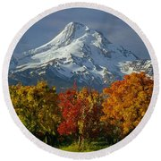 1m5117-mt. Hood In Autumn Round Beach Towel