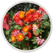 Multi Colored Rose Bush Round Beach Towel by Catherine Gagne