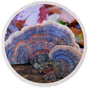 Multicolor Mushroom Round Beach Towel