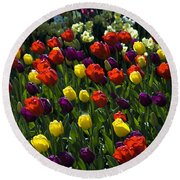Multicolored Tulips At Tulip Festival. Round Beach Towel