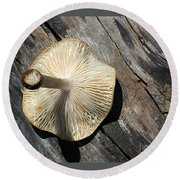 Round Beach Towel featuring the photograph Mushroom On Stump by Tina M Wenger