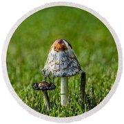 Mushrooms Round Beach Towel
