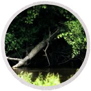 Muskegon River Heron Round Beach Towel