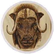 Muskox Round Beach Towel by Ron Haist
