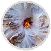 Muted Hibiscus Round Beach Towel by Cindy Manero